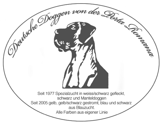 Deutsche dogge freiburg